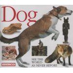 Eyewitness: Dog