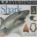 Eyewitness: Shark