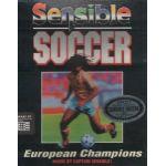 Sensible Soccer.